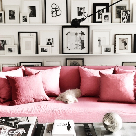 Pink sofa in a black and white room with a very cute dog